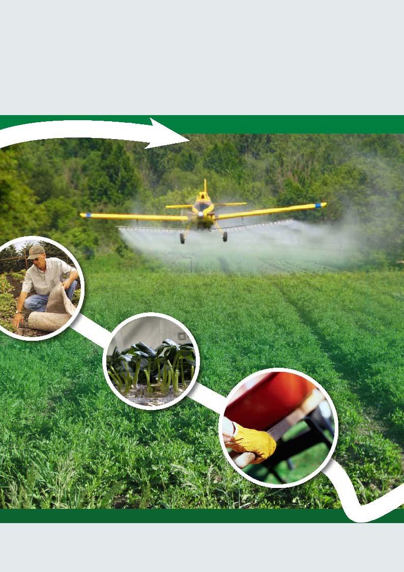 Herbicides China News