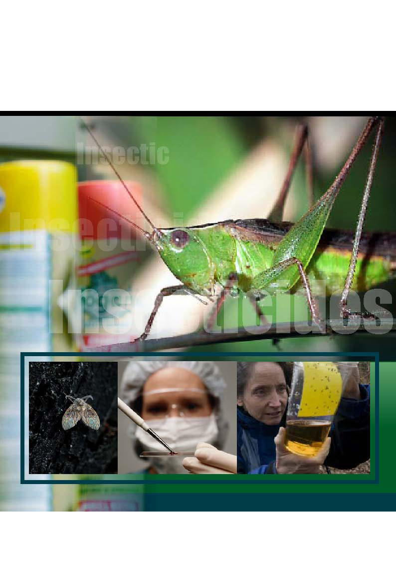 Insecticides China News