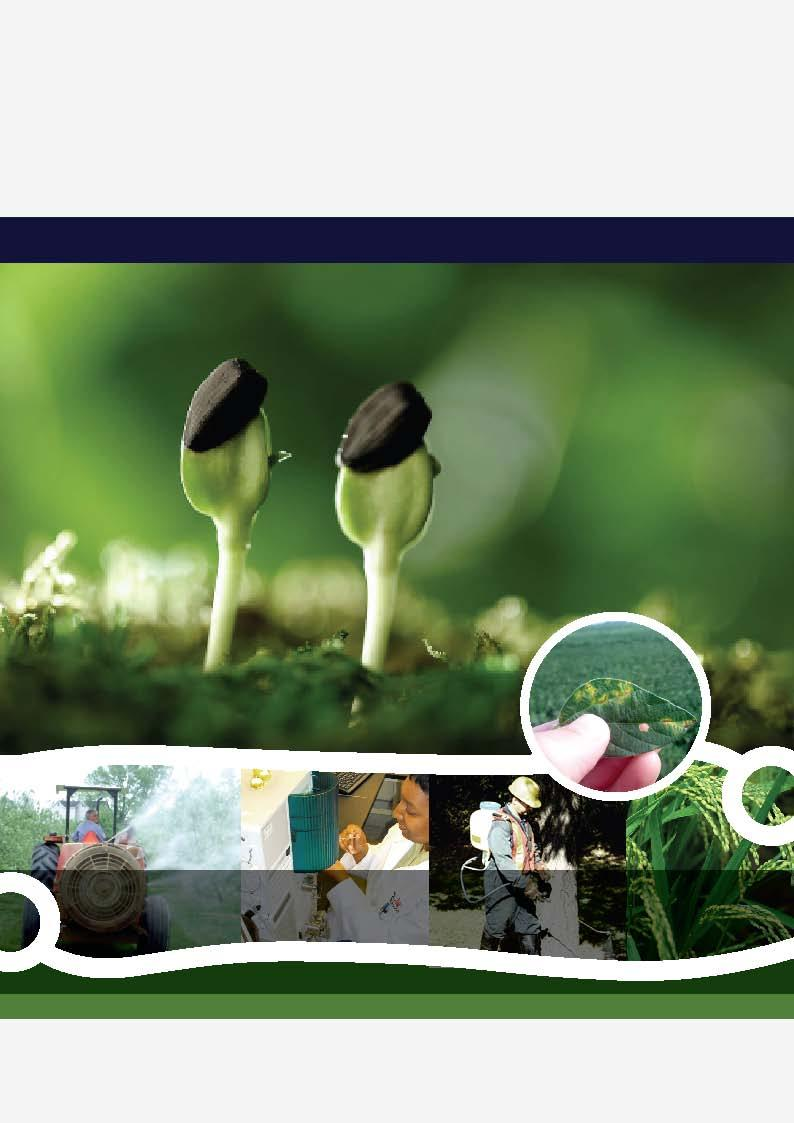Fungicides China News (Chinese version)