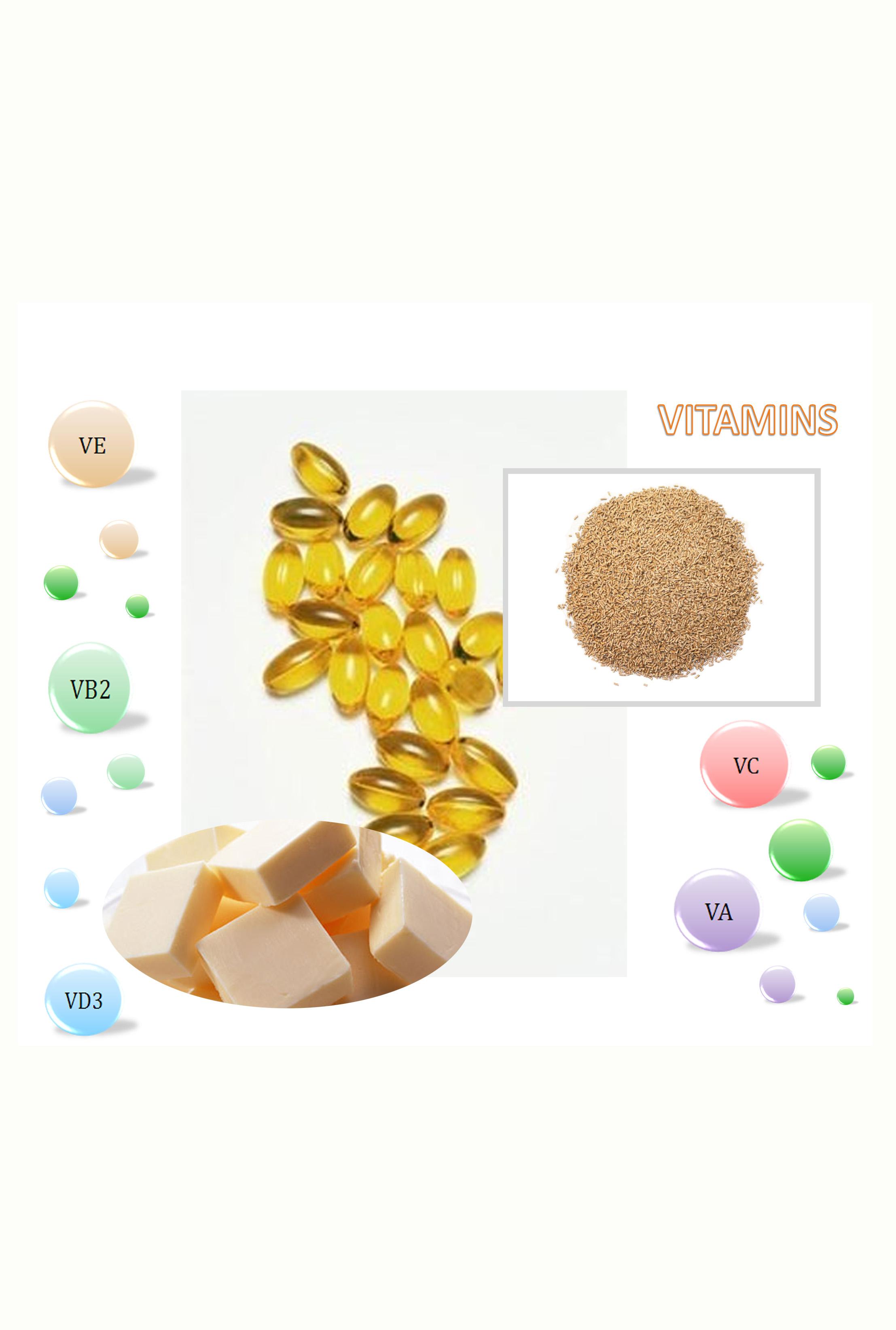 Vitamins China E-News